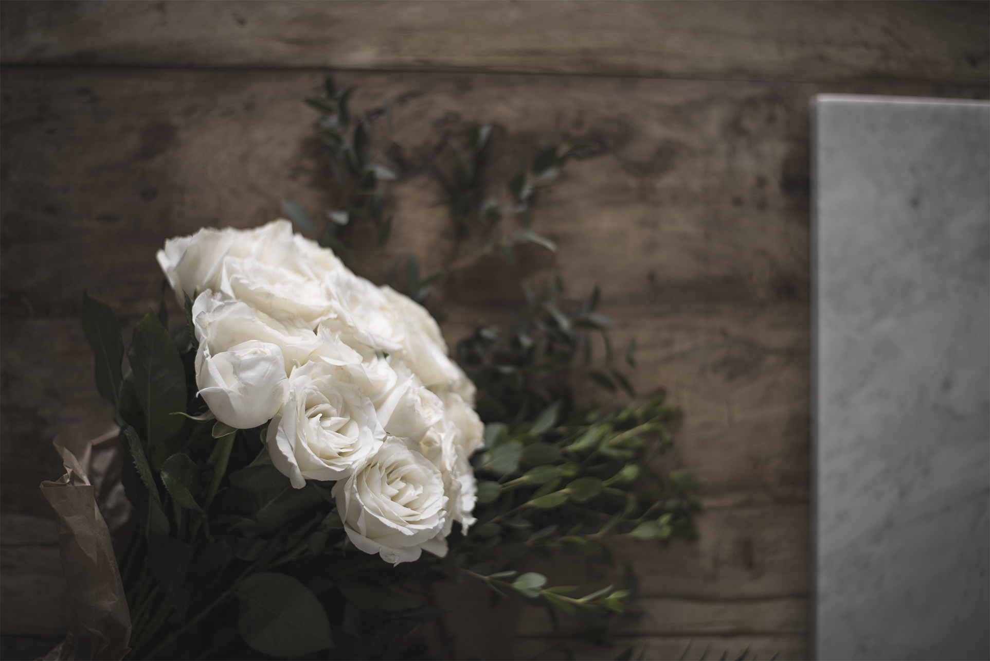 white roses flower photography